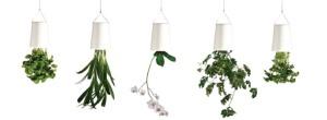 Boskke white planters